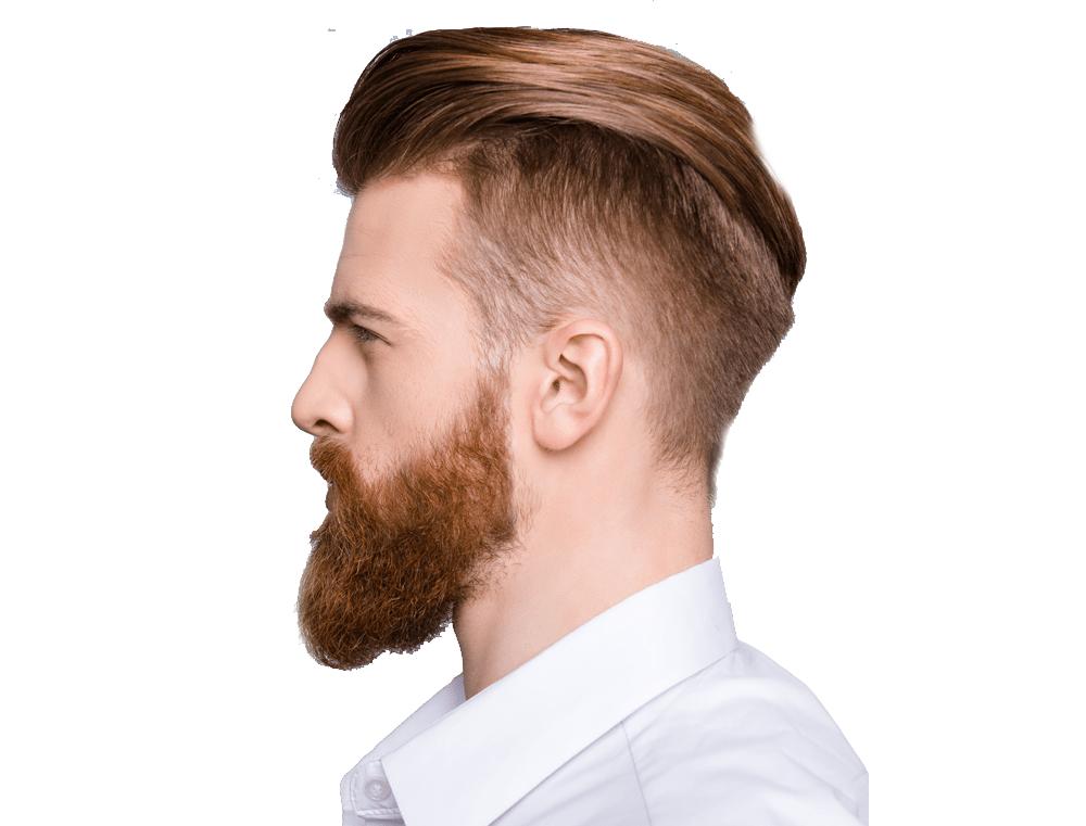 شناخت فرم های نیم رخ در آرایشگری